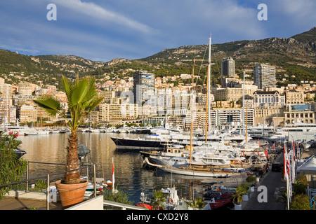 Yacht marina in Port de Monaco, Monte Carlo City, Monaco, Mediterranean, Europe - Stock Photo