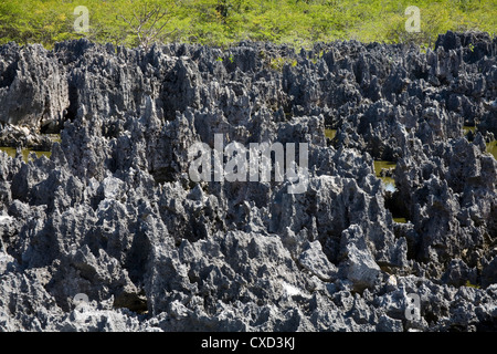 Rock Formations in Hell, Grand Cayman, Cayman Islands, Greater Antilles, West Indies, Caribbean, Central America - Stock Photo