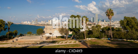 Downtown buildings viewed from HaPisgah Gardens Park, Jaffa, Tel Aviv, Israel, Middle East - Stock Photo