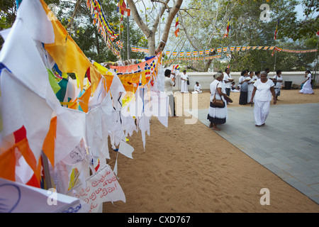 People praying at Sri Maha Bodhi (sacred bodhi tree), Anuradhapura, North Central Province, Sri Lanka - Stock Photo