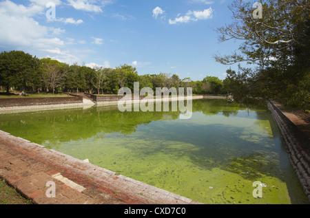 Et Pokuna (Elephant Pool), Northern Ruins, Anuradhapura, UNESCO World Heritage Site, North Central Province, Sri - Stock Photo