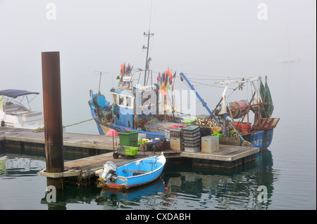 Fishing boat in thick fog in the harbour at Saint-Denis-d'Oléron on the island Ile d'Oléron, Charente-Maritime, - Stock Photo