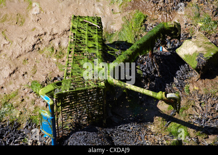 Discarded shopping trolley covered in seaweed exposed at low tide - Stock Photo