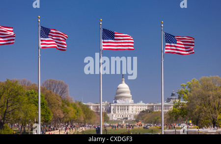 WASHINGTON, DC, USA - USA flags and United States Capitol building on the National Mall. - Stock Photo