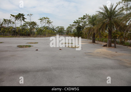 It's a photo of an abandoned car park in Thailand, Asia. We can see many palm trees and the grass starts to grow - Stock Photo