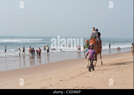 Indian holidaymakers on Puri beach, young family taking camel ride along the beach, Puri, Bay of Bengal, Orissa, - Stock Photo
