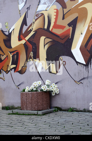 Saarbruecken, Blumenkuebel planted and sprayed with graffiti wall - Stock Photo