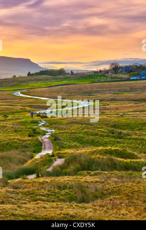 Pen-y-ghent one of the Yorkshire Three Peaks, Ribble Valley, Yorkshire Dales National Park, North Yorkshire, England, - Stock Photo