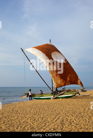 Fisherman and Oruvas (traditional outrigger dug-out canoe), Negombo beach, Western Province, Sri Lanka, Asia - Stock Photo