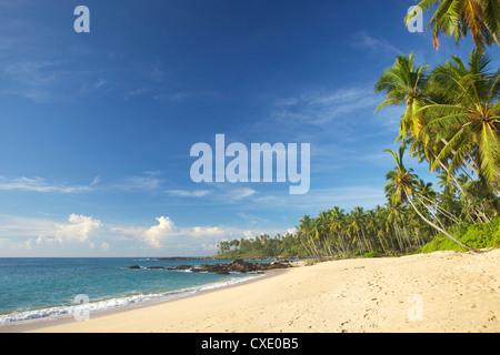 View of the unspoilt beach at Palm Paradise Cabanas, Tangalle, South coast, Sri Lanka, Asia - Stock Photo