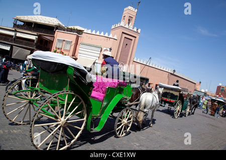 Horse and carriage, Place Jemaa El Fna, Marrakesh, Morocco, North Africa, Africa - Stock Photo