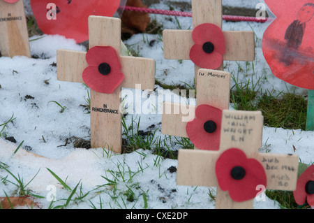 Remembrance Day crossed in the snow, Holmes Chapel, Cheshire, UK - Stock Photo