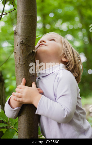 Toddler girl embracing tree trunk, looking up - Stock Photo
