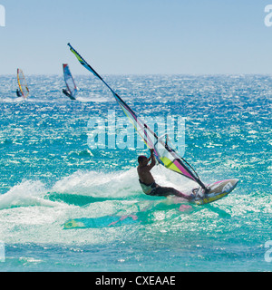 Windsurfer riding wave, Bonlonia, near Tarifa, Costa de la Luz, Andalucia, Spain, Europe - Stock Photo