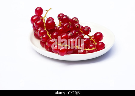 Currants in a white dish on white background - Stock Photo