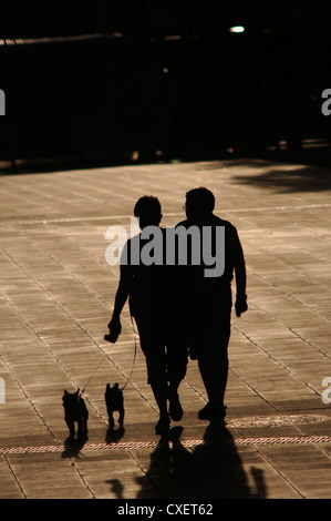 Sunlight silhouettes people and dogs walking in the sunset, throwing a long shadow over the stone paved floor. - Stock Photo