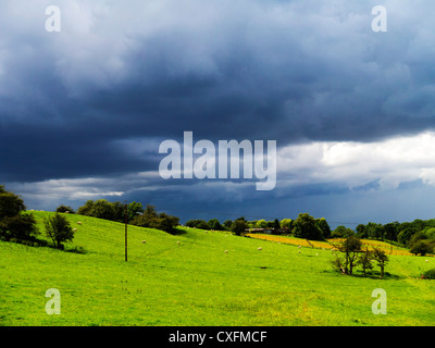 views from the monarchs way long distance footpath tardebigge worcestershire - Stock Photo
