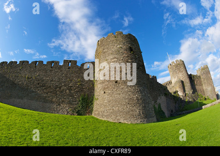 Conwy medieval castle and fortified town walls in summer, Gwynned, North Wales, UK, GB, British Isles, Europe - Stock Photo