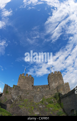 Conwy medieval castle in summer, Gwynned, North Wales, UK, GB, British Isles, Europe - Stock Photo