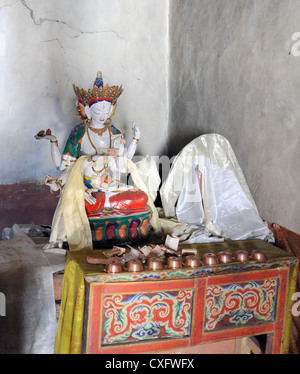 Shrine with offerings.   Namgyal Tsemo Gompa,  Leh, Ladakh, Republic of India. Stock Photo