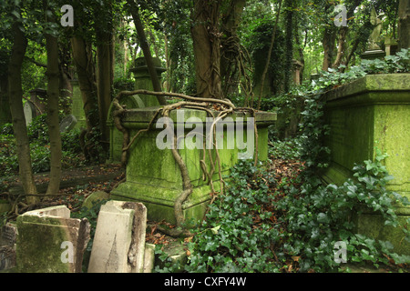 The Highgate West Cemetery in London England - Stock Photo