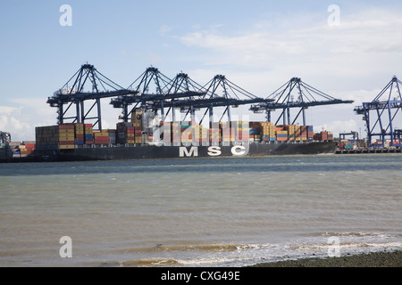 Cranes container ships Port of Felixstowe from Shotley Suffolk England - Stock Photo
