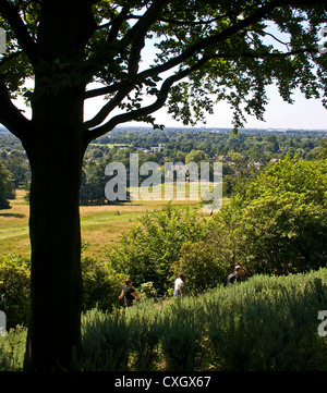 Panorama view Vista of grade 1 listed Richmond Park and beyond from King Henry's Mound London England Europe - Stock Photo