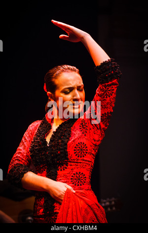 Female Flamenco dancer performs traditional step in classical red dress costume, hairstyle and form - Stock Photo