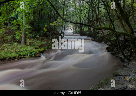Bowlees Beck and Summerhill Force in Flood Conditions, Bowlees, Upper Teesdale, County Durham. UK - Stock Photo
