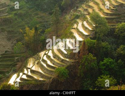 rice terraces of yuanyang,  yunnan, china - Stock Photo
