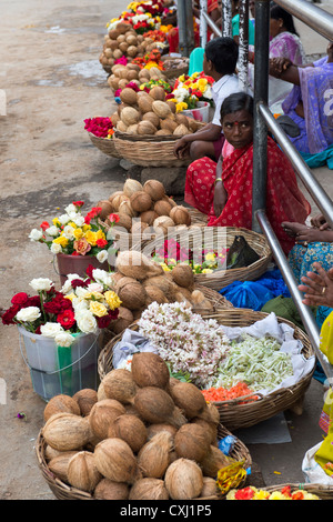 Indian women selling flowers and coconuts on a street in Puttaparthi, Andhra Pradesh, India - Stock Photo