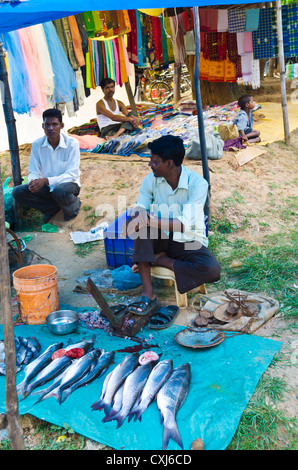 Fresh fish on sale on the roadside by the river nile in for River fish market