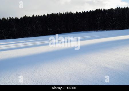 Winter Landscape near Villingen-Schwenningen, Black Forest, Baden-Wurttemberg, Germany - Stock Photo