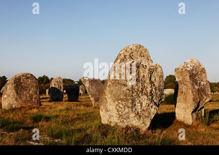 Image at the dusk of megalithic monuments menhirs in Carnac , Brittany in northwest of France. - Stock Photo