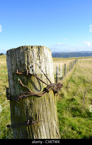 Close up of Fence post, Middleton top, Derbyshire - Stock Photo