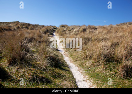 A sandy pathway through machair covered sand dunes towards Traigh Eais on the West coast, Barra, Outer Hebrides, - Stock Photo