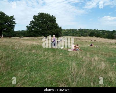 An elderly woman cyclist walking with her bike crossing Hampstead Heath   landscape in summer London NW3 England - Stock Photo