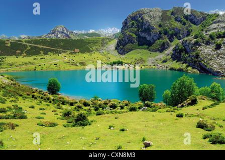 Spain, Asturias: Mountain panorama at Lake Enol in the National Park Picos de Europa - Stock Photo