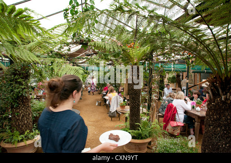 Petersham Nurseries Cafe, Petersham, London, UK, where chef Skye Gygnell has won a Michelin Star - Stock Photo