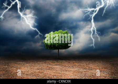lone tree on a desert land, under a storm, global warming and climate change concept - Stock Photo