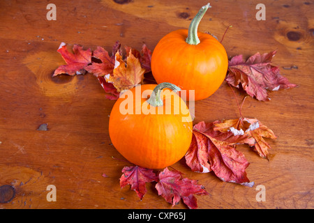 Miniature fall pumpkins with autumn leaves on a wooden table. - Stock Photo