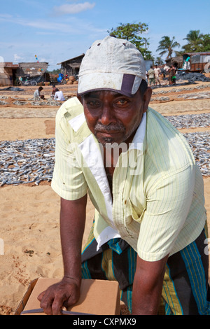 Local fisherman at the local harbour, Negombo, Sri Lanka with fish drying on matting in the background. - Stock Photo