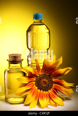 Cooking oil in a plastic and glass bottles with sunflower on a dark yellow background. - Stock Photo