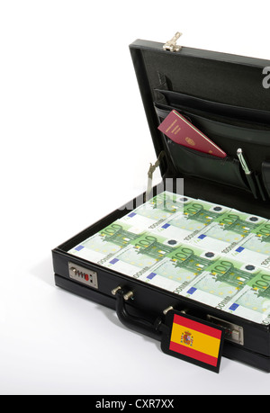 Symbolic image for European countries at risk, 100-euro banknotes in a briefcase, suitcase of money, luggage tag - Stock Photo