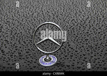 Mercedes star on a bonnet covered in rain drops, car paint, logo, - Stock Photo