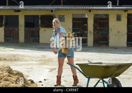Young female farmer, horse manure, cleaning out, push cart, wheelbarrow, Gingen, Baden-Wuerttemberg, Germany, Europe - Stock Photo