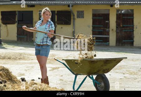 Young female farmer, pitchfork, horse manure, cleaning out, push cart, wheelbarrow, Gingen, Baden-Wuerttemberg, - Stock Photo