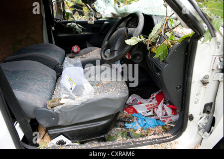 White Van Crushed by falling tree in high winds - Stock Photo