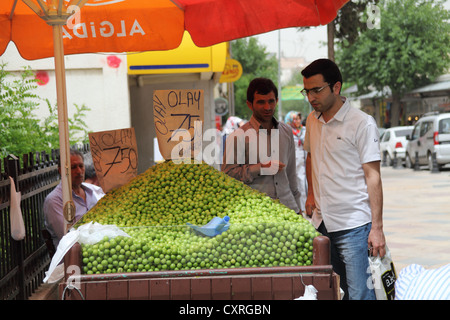 Street scene and plum stall in the old city of Sanliurfa south east Turkey - Stock Photo