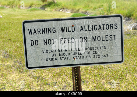 Sign 'do not feed or molest alligators', Seminole Country, Everglades, Florida, USA